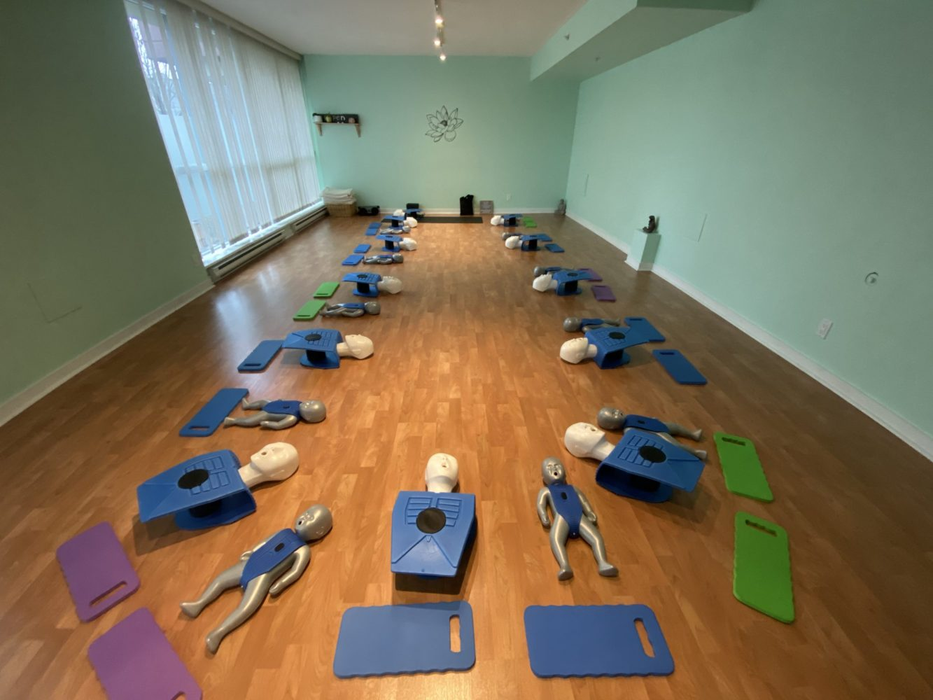 Yoga Spirit & Wellness (Burnaby)